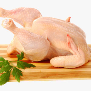 Pollo pagès