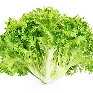escarola-fruta-y-verdura-verduras-y-hortalizas