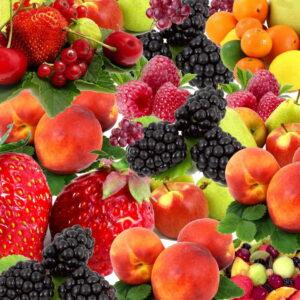 barrecha-frutos-rojos